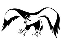 Атакуя хоук с широкими крылами