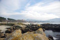 Атлантическая флора около пляжа Samil в Виго, Виго, Галиции, Испании Стоковое Изображение RF