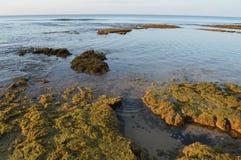 атлантический океан свободного полета стоковые фото