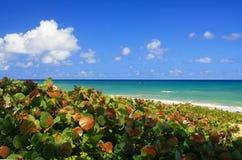 атлантическое голубое небо океана береговой линии Стоковые Фото