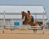 атлетическая лошадь девушки скача над рельсами предназначенный для подростков Стоковая Фотография RF