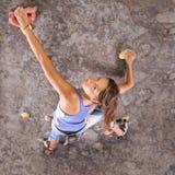 атлетические взбираясь детеныши девушки Стоковое Изображение RF