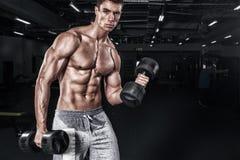 Атлетический без рубашки молодой человек спорт - модель фитнеса держит гантель в спортзале Скопируйте переднюю часть космоса ваш  стоковые изображения
