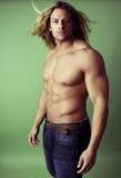 атлетический мужчина строителя тела сексуальный Стоковое Изображение RF