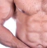 атлетический привлекательный мужчина строителя тела сексуальный Стоковая Фотография