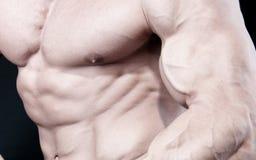 атлетический привлекательный мужчина строителя тела сексуальный Стоковое Изображение RF