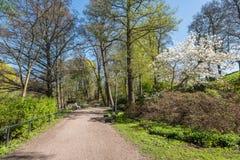 Атмосфера весны в Norrköping, Швеции стоковое изображение