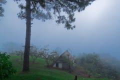 Атмосфера на животиках Mae укомплектовывает личным составом гору, Чиангмай, Таиланд Стоковое фото RF
