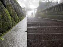 Атмосферическая лестница виска Стоковые Фото