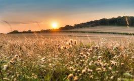 Атмосферический заход солнца над полем Стоковая Фотография