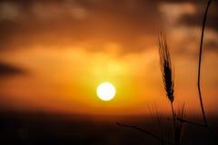 Атмосферический заход солнца Стоковая Фотография RF