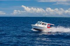 Атолл Ari, Мальдивы - 17-ое декабря 2015: Курсировать туристского быстроходного катера быстрый в море на Мальдивах, Индийском оке стоковое изображение