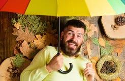 Атрибуты атмосферы падения Битник с усиком бороды предпологает что ненастный зонтик владением погоды наслаждается сезоном Положен стоковые изображения