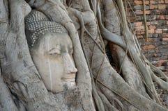 латунная крыша головки края Будды сделанная японией вне сползает Стоковые Фотографии RF