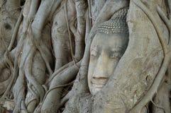 латунная крыша головки края Будды сделанная японией вне сползает Стоковые Фото
