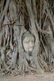 латунная крыша головки края Будды сделанная японией вне сползает Стоковое Изображение RF