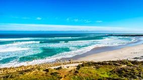 Атлантическое побережье вдоль дороги к пику ` s Чэпмена на маяке Slangkop Стоковые Фото