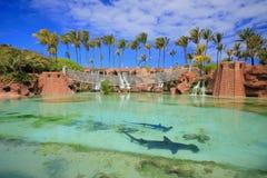 Атлантида Багамы Стоковые Фото