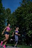 Атлетические женщины работая путем jogging в природе стоковое изображение rf