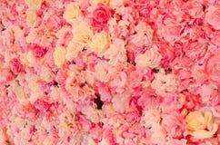 Афиша вполне розовых цветков стоковое фото rf