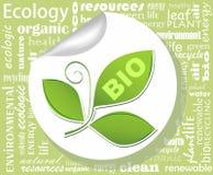 Афиша для органического продукта с лист Стоковое Изображение