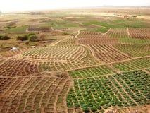 африканец fields ландшафт Ганы сельский стоковые изображения rf