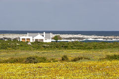 африканская береговая линия южная Стоковое фото RF