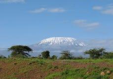 Африканская гора Килиманджаро Стоковые Фотографии RF