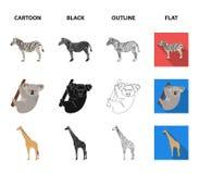 Африканская зебра, животная коала, жираф, одичалый хищник, лев Дикие животные установили значки собрания в шарже, черноте, плане бесплатная иллюстрация