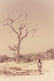 Африканская прогулка Стоковые Изображения RF