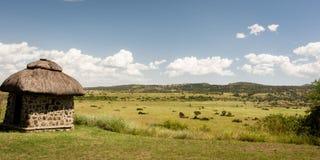 Африканская хата в степи Стоковая Фотография RF