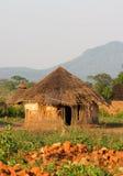 африканская хата Стоковое Изображение