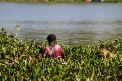 Африканские женщины стоят в воде на береге Lake Victoria стоковые изображения