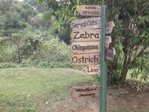 Африканские плакаты животного парка Стоковая Фотография