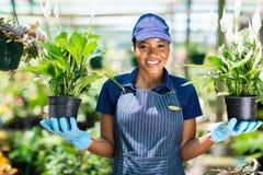 Африканские цветки флориста стоковое изображение rf