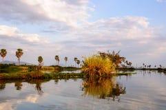 Африканский ландшафт принятый в озеро Manze, Selous Стоковое Изображение