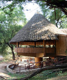 Африканский бар в курорте сафари стоковое изображение rf