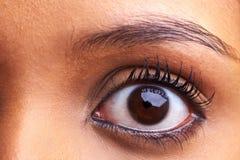 африканский глаз Стоковые Изображения