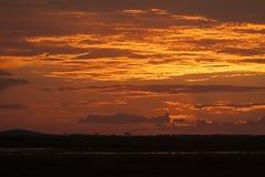 Африканский заход солнца на сафари Стоковые Фото