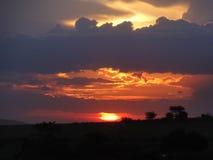 африканский заход солнца Стоковое Изображение