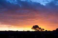 африканский заход солнца стоковая фотография rf