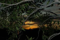 африканский заход солнца Стоковое Фото