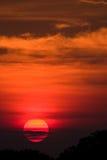 африканский золотистый заход солнца Стоковое Изображение