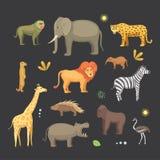 Африканский комплект вектора шаржа животных слон, носорог, жираф, гепард, зебра, гиена, лев, гиппопотам, крокодил, gorila и Стоковое Изображение