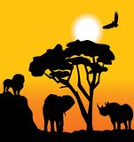 африканский ландшафт Стоковое Фото