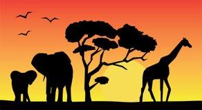 африканский ландшафт иллюстрация вектора