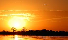 африканский ландшафт Стоковая Фотография