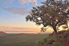 африканский мечтательный заход солнца стоковое изображение rf