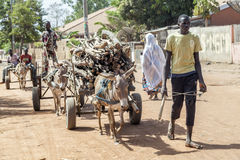 Африканский молодой человек носит швырок Стоковые Фотографии RF