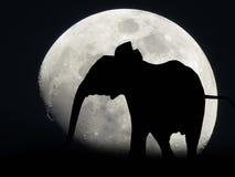 Африканский подъем луны Стоковые Изображения